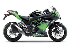 Kawasaki Ninja 300 2017